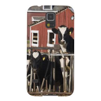 新しいWalpoleのBoggy草原の農場のホルシュタイン Galaxy S5 ケース