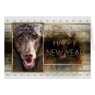 新年-金優雅-プードル-チョコレート カード