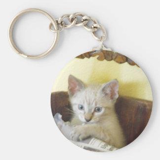 新聞が付いている子猫 キーホルダー