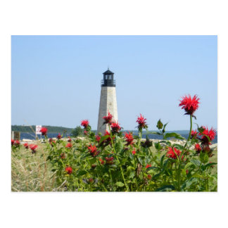 旅行かばん、ミシガン州の灯台 ポストカード