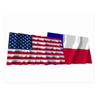 旗を振る米国およびテキサス州 ポストカード
