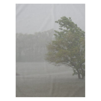 既にあふれられた湖上の重く風が強い嵐 テーブルクロス