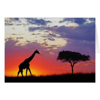 日の出でシルエットを描かれるキリンGiraffa カード
