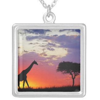 日の出でシルエットを描かれるキリンGiraffa シルバープレートネックレス