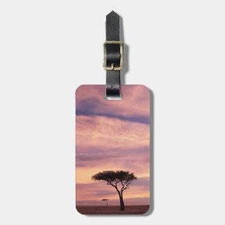 日の出のアカシアの木のシルエットのイメージ ラゲッジタグ