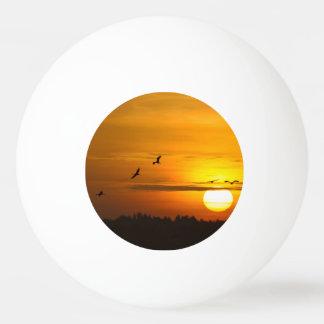 日の出のクレーン 卓球ボール