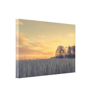 日の出の凍結する草 キャンバスプリント