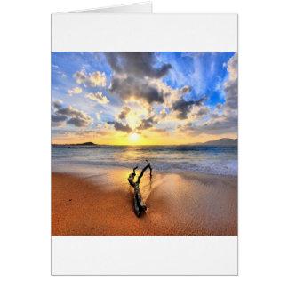日の出の流木のビーチ カード