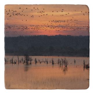 日の出の鳥 トリベット