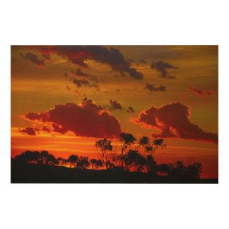 日の出は完全な時間です ウッドウォールアート