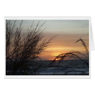日の出、海都市MD. カード