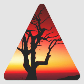 日の出Shenandoah 三角形シール