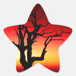 日の出Shenandoah 星シール