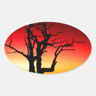 日の出Shenandoah 楕円形シール