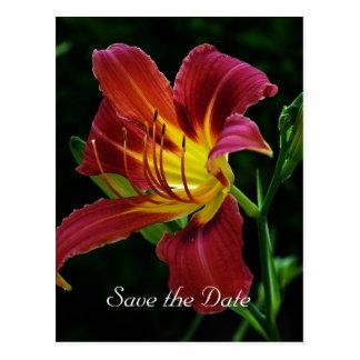 日付、オニユリの花を救って下さい ポストカード
