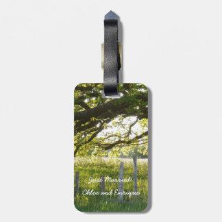 日光および木の新婚旅行のスーツケースのラベル ラゲッジタグ