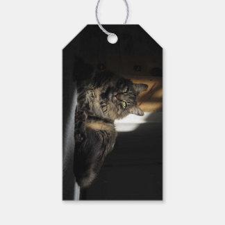 日光のギフトのラベルのKimber猫のスライバ ギフトタグ