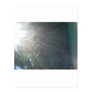 日光水 はがき