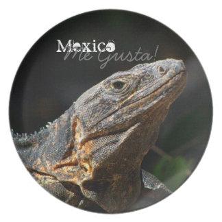 日曜日のイグアナ; メキシコの記念品 プレート