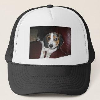 日曜日のビーグル犬 キャップ