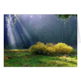 日曜日の草原 グリーティングカード