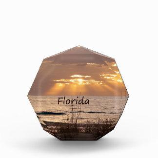 日曜日はフロリダの日没を放射します 表彰盾