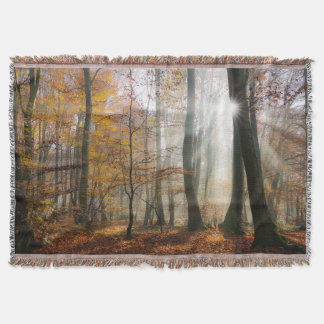 日曜日は神秘的で霧深い森林毛布を放射します スローブランケット