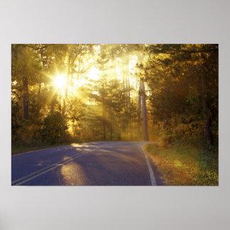 日曜日は道路に森林を通ってで破烈します ポスター