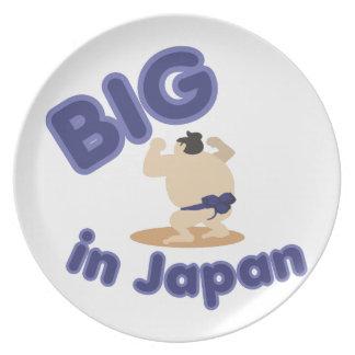 日本で大きい相撲のレスリング選手 プレート
