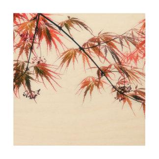 日本のなアメリカハナノキの芸術の写真撮影 ウッドウォールアート