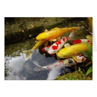 日本のなコイのコイの十分の水路 カード