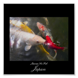 日本のなコイの魚のポスター ポスター