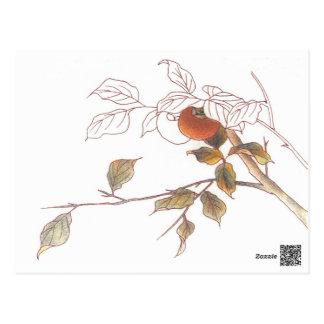 日本のな柿の郵便はがき ポストカード
