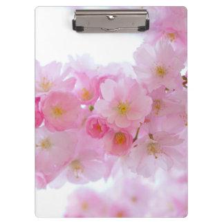 日本のな桜 クリップボード