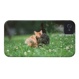 日本のな猫4 Case-Mate iPhone 4 ケース