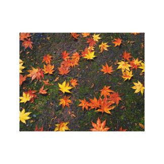 日本のな秋のかえでは印刷するために壁のキャンバスを去ります キャンバスプリント