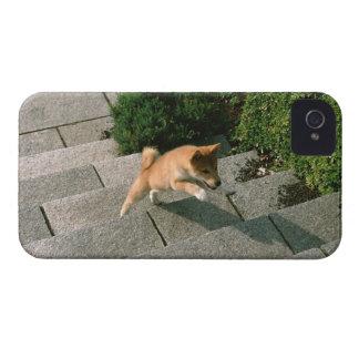 日本のな超小型のShiba 3 Case-Mate iPhone 4 ケース