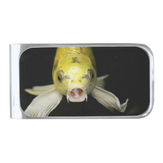 日本のコイの魚 シルバー マネークリップ