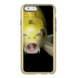 日本のコイの魚 INCIPIO FEATHER SHINE iPhone 6ケース