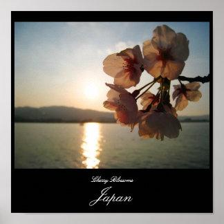 日本の桜 ポスター