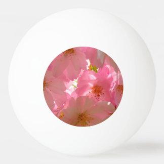 日本桜 卓球ボール