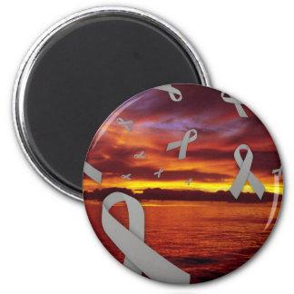 日没による糖尿病の認識度のリボンの浮遊物 マグネット
