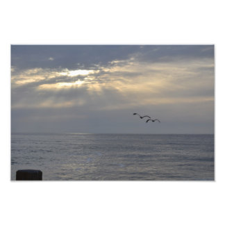 日没に飛んでいる鳥 フォトプリント