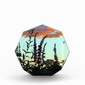 日没のアクリルの芸術の高い草 表彰盾