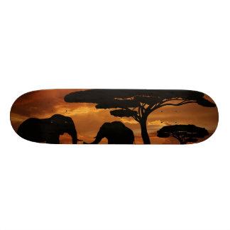 日没のアフリカゾウのシルエット スケートボード