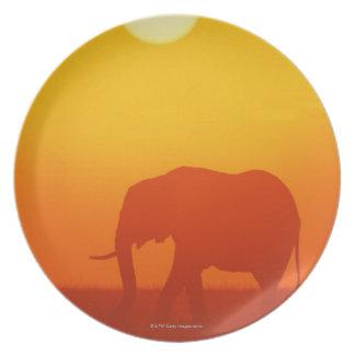 日没のアフリカゾウの歩く、ケニヤ パーティープレート