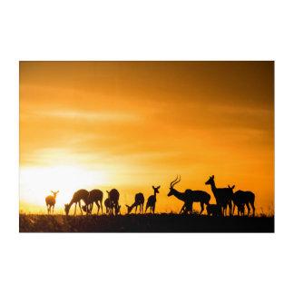 日没のインパラの群れ アクリルウォールアート
