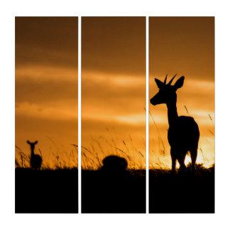 日没のインパラ トリプティカ