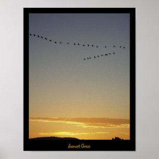 日没のガチョウ ポスター