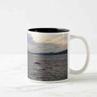 日没のザトウクジラ ツートーンマグカップ